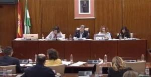 comision salud parlamento PNL